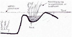 Randafwerking natuurlijke vijver